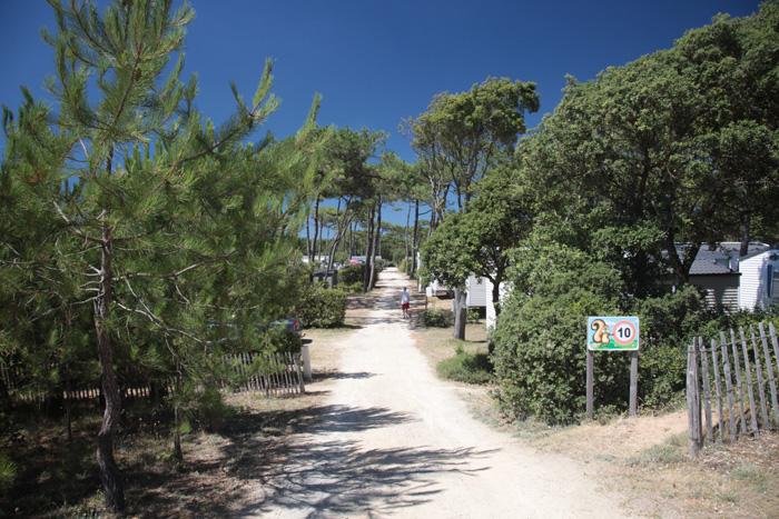 Vous voici dans un camping avec emplacement et accès direct à la plage de Saint Hilaire de Riez