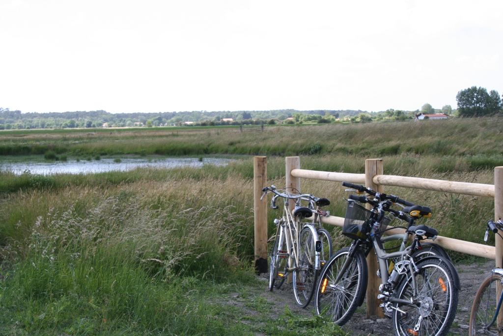 Camping avec pistes cyclables à Saint Gilles Croix de Vie