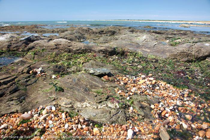 Location dans ce camping proche de la plage de Saint Hilaire de Riez