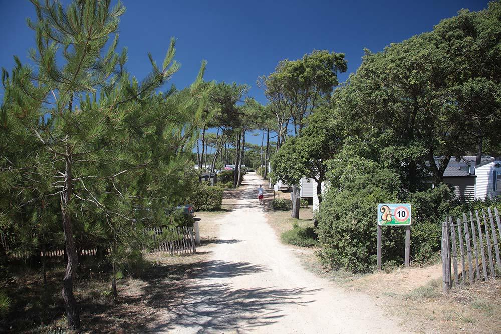 location emplacements ombragés Saint Gilles Croix de Vie